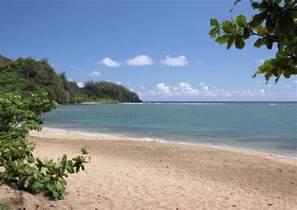 Kauai Flowers - hanalei bay beach by rau imaging