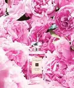 Parfum Jo Malone Peony Blush Edc 100ml jo malone peony and blush suede new fragrances