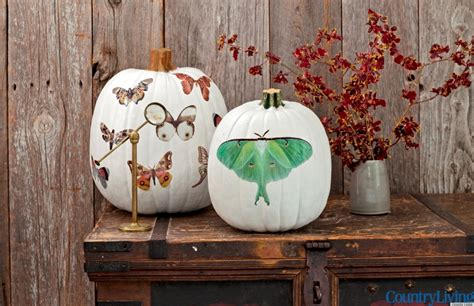halloween decorations home made homemade halloween decorating ideas country living