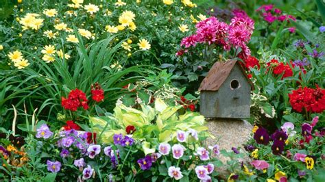 Flower Garden Photos Free Free Desktop Wallpaper Flowers Garden Wallpapersafari
