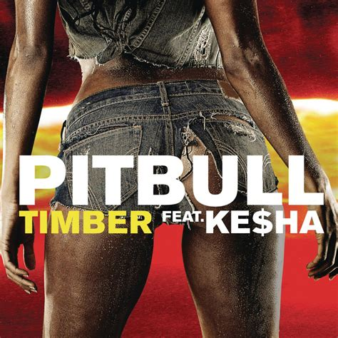 swing your partner round and round lyrics pitbull timber lyrics genius lyrics