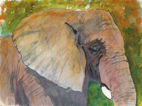 bunny s artwork elephant watercolor painting