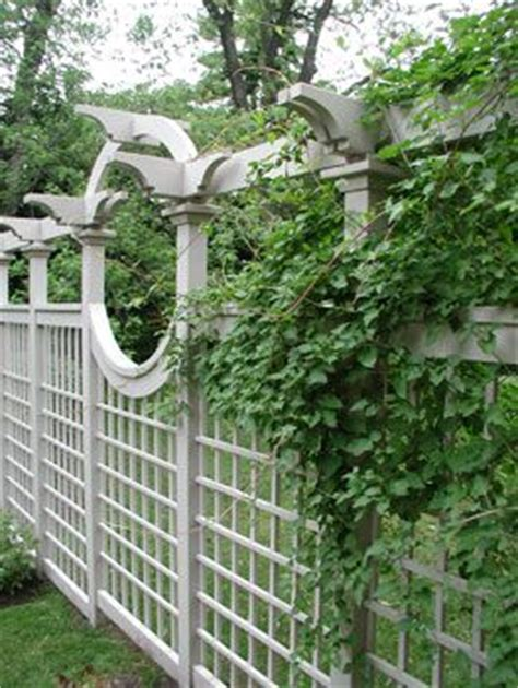 backyard lattice structures large curved privacy screen fence fencing great site for