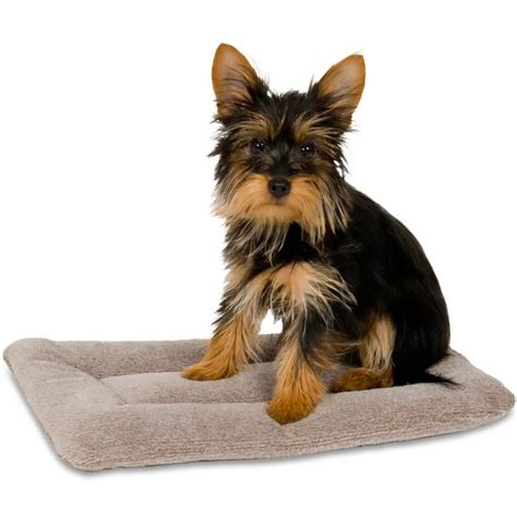 Petmate Kennel Mat by Petmate Kennel Mat 16 Quot X9 Quot Upto 10 Lbs
