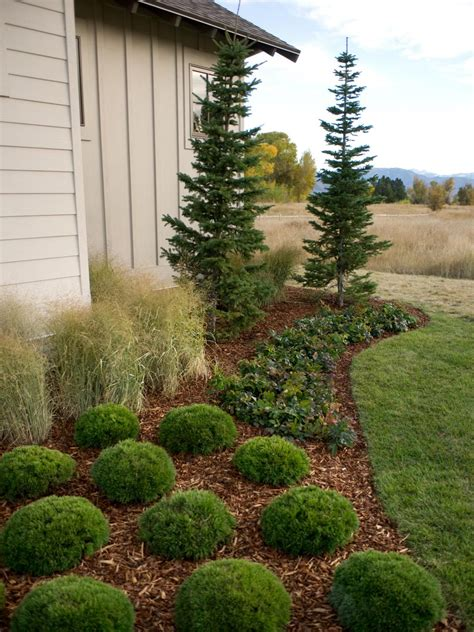 hgtv dream home  front yard pictures  video