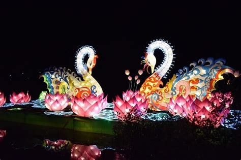 chinese light festival cary nc the chinese lantern festival decora india read now