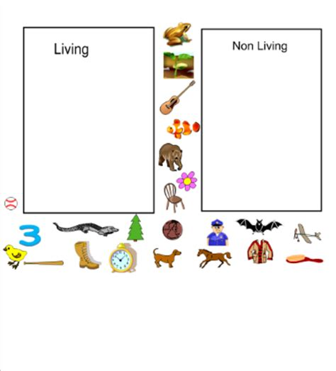 smart exchange usa living and non living picture sort