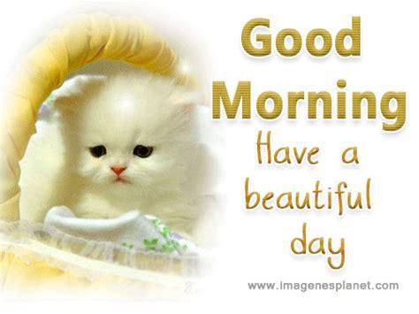 imagenes de good morning mom 17 mejores ideas sobre imagenes romanticas con movimiento