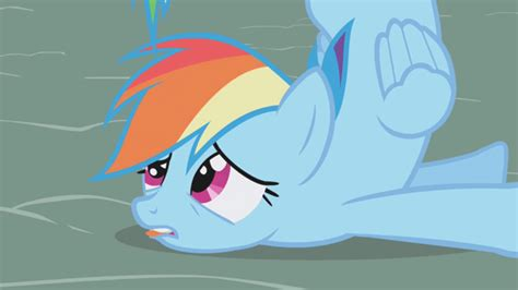 Mlp Rainbow Dash Meme - rainbow dash my little pony friendship is magic know