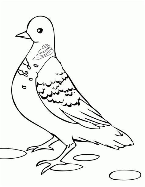 dove color free dove coloring page coloring home