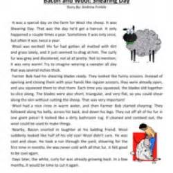 bacon and wool shearing day reading comprehension worksheet
