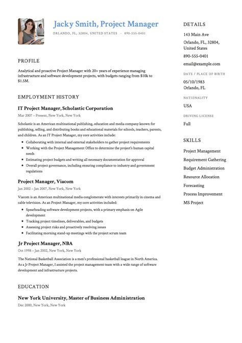 project coordinator resume summary inspirational it project