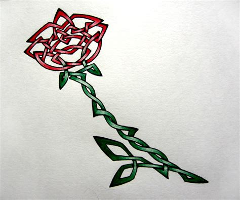 irish rose tattoo designs celtic by bumblebre on deviantart