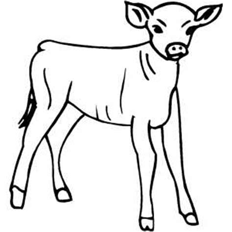 calf coloring sheet