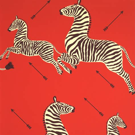 scalamandre wallpaper duchess fare zebras leaping the walls into the streets