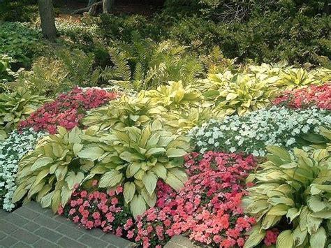 Hosta Garden Ideas 436 Best Images About Hosta Gardening On