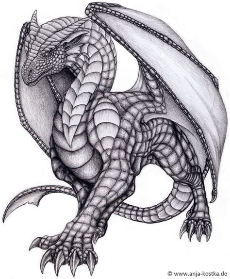 the best drawings of dragons best 25 dragon drawings ideas on pinterest dragon art