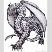 Drawn dragon my...