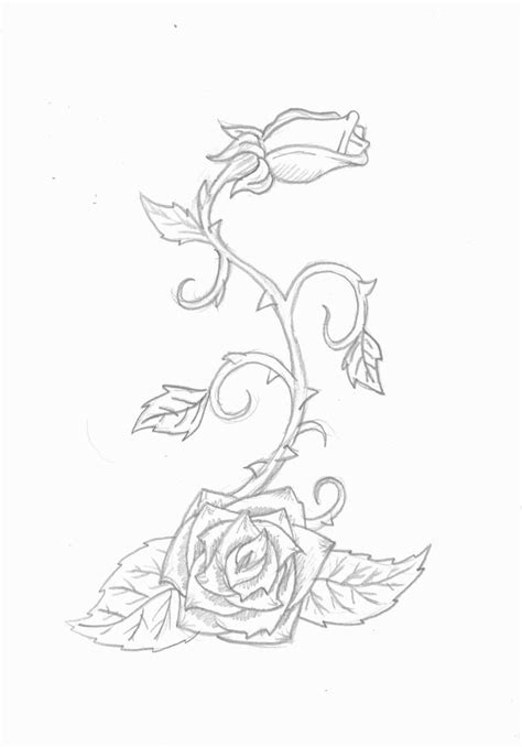 rose and vines tattoo collection of 25 vine picture