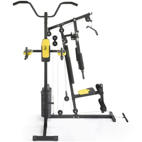 everlast home with dip station fitness and