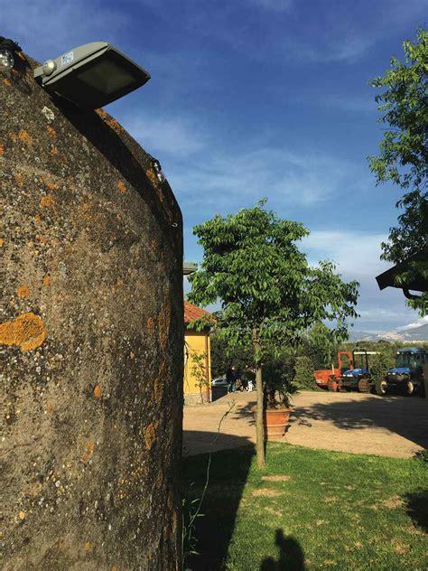 fattoria di fiorano fattoria di fiorano roma nobile