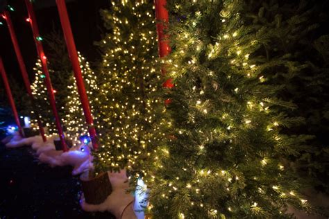 canadian tire sues wal mart over christmas lights