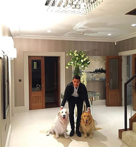 alexis sanchez dogs instagram photo arsenal star alexis sanchez reunited with his dogs