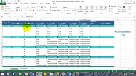 project plan in excel with milestones and summery