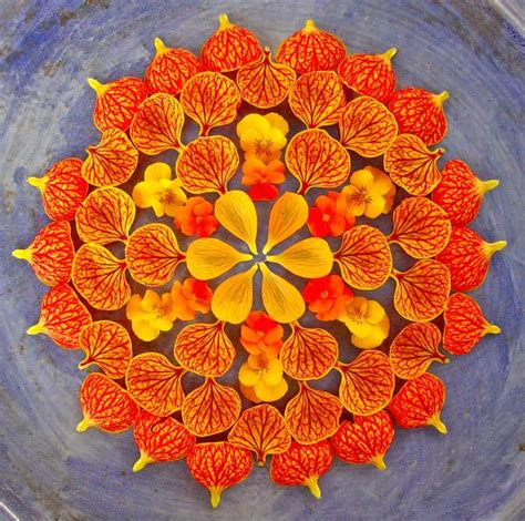 Unique Flower Vases by Flower Mandalas By Kathy Klein Colossal