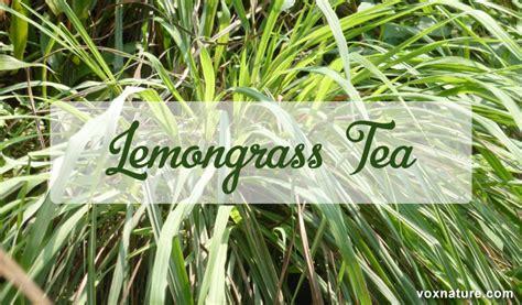 Health Benefits of Lemongrass Tea | Vox Nature Lemongrass Benefits Cancer