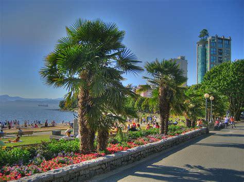 Home Decor Langley palm tree locations