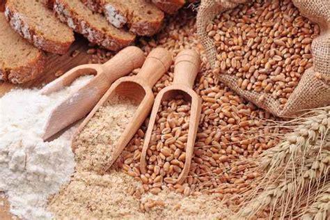 Benih Jagung Dk membedakan jenis dan manfaat gandum alodokter
