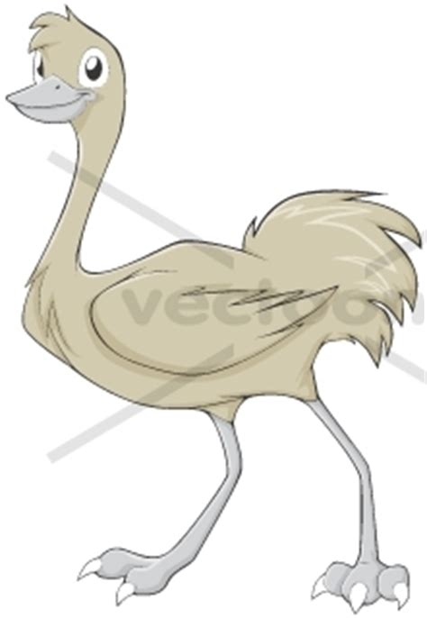 smiling greater rhea illustration animals buy clip art