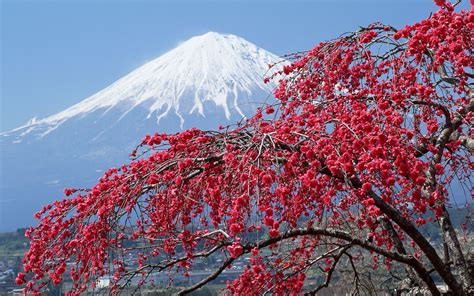 imagenes hd japan 1080p hd japan wallpapers for free download the