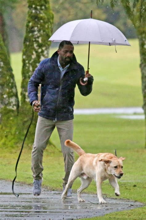 puppies are us idris elba on the set of the mountain between us with a