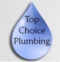 top choice plumbing in toronto homestars