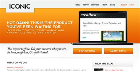 Buy A Professional Website Template Iapdesign Photoshop Tutorials Phillippines30 Premium