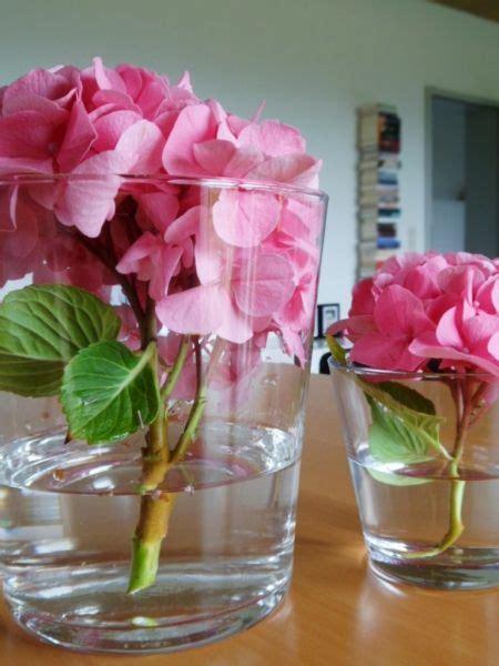 für die hochzeit tischdeko hortensien free ausmalbilder