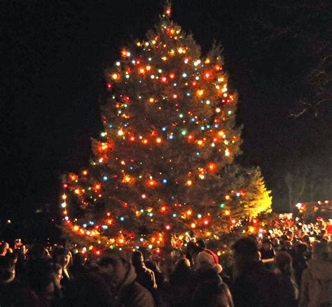 christmas tree lighting friday at newtown s ram pasture
