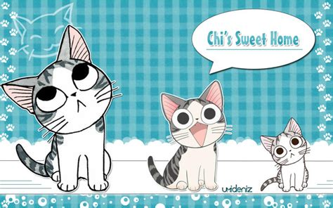 chi s sweet coloring book chi s sweet home books chi une vie de chat