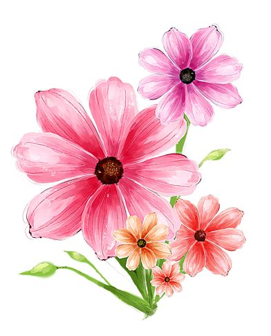 flower design pictures flower pink psd graphic flower psd file free