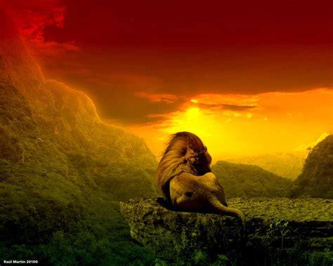 imagenes de leones de zona ganjah behind the rasta colors stoner blog