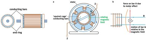 induction motor diagram 3 phase squirrel cage induction motor diagram 3 phase stepper motor diagram elsavadorla