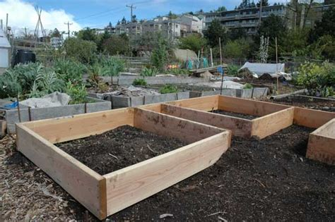 Raised Bed Vegetable Garden Soil Preparation Preparing A Vegetable Garden For 5 Tips To Follow