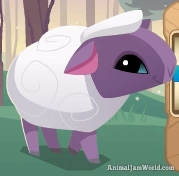 Animal Jam Membership Giveaway 2017 - animal jam sheep codes pictures video animal jam world