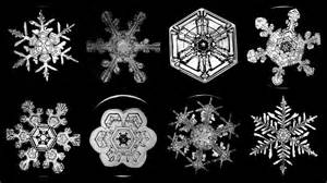 Snowflake Bentley Snowflake Bentley His Unique Snowflakes Widening