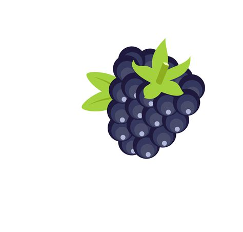 free vector clipart blackberry vector clipart image free stock photo