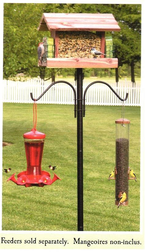 bird feeder 5ft pole post plus decorative hangers ebay
