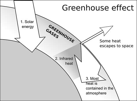 greenhouse effect diagram global warming facts cool kid facts