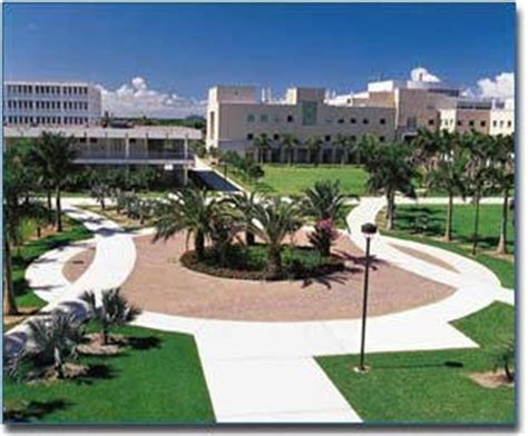 Fau Search Florida Atlantic The Florida College Guide